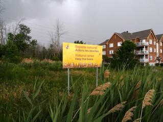 Pincourt pollinators protected