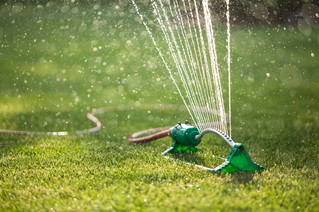 Complete watering ban imposed by Vaudreuil-Dorion