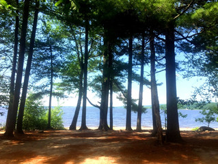Group says beach development a burden to Hudson's books