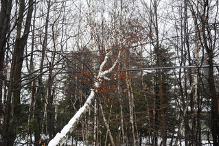 Nature and resources discussed in Saint-Lazare