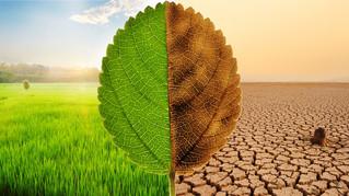 Climate Crisis talk