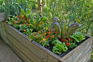 Container bed gardening demo