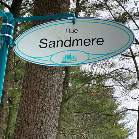Saint-Lazare council clarifies stance regarding environmental protection draft by-law