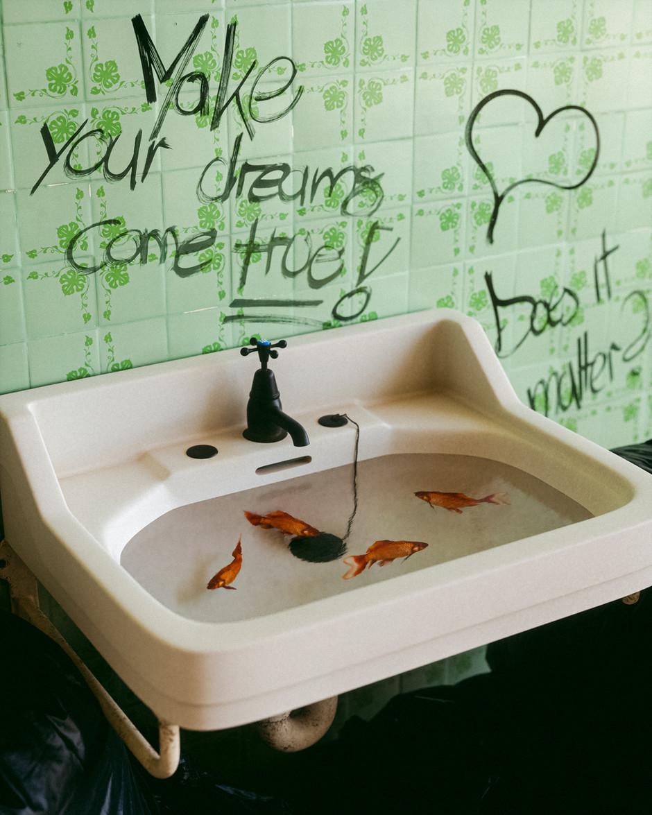 fish sink2.jpg