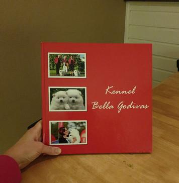 Sain upean kuvakirjan ystäviltäni lahjaksi!