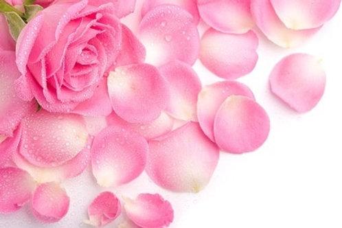 Rose Facial Bar