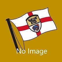 Flag GOLD 2b.jpg