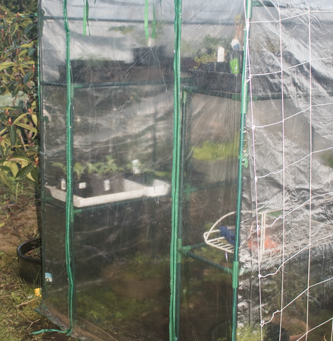 An affordable greenhouse
