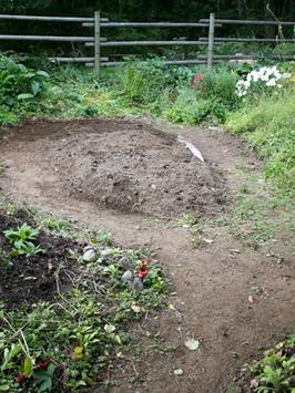 Garden beds grow, too