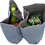 Thumbnail: Vegetables Basket