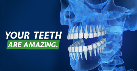 Your Teeth Are Amazing! 5 Fascinating Facts