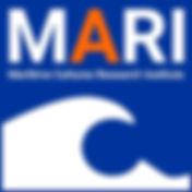 MARI, VUB