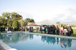 Wedding Party by the pool