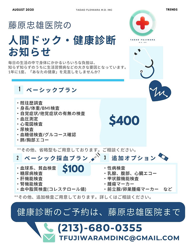Fuji Flyer 09152.jpg
