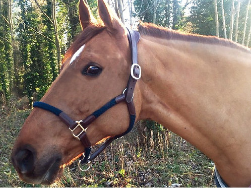 CAVALETTI Halfter Cord / Leder