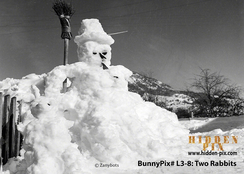 bunny a  hidden_watermark copyright best