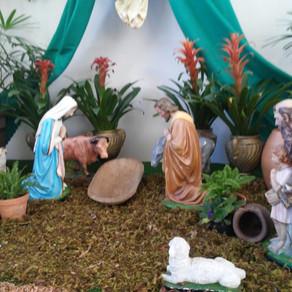 Horários das Missas nos dias 24 e 25 de Dezembro de 2019