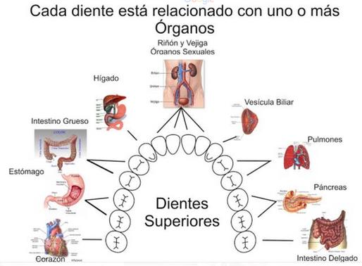 Focos infecciosos de la boca y su relación con las enfermedades sistémicas