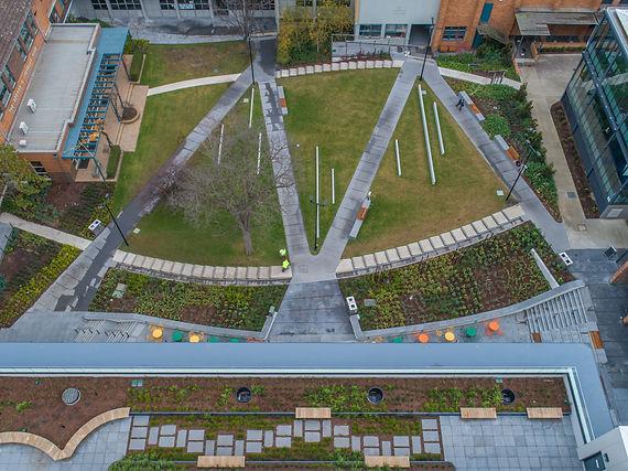 School landscaping garden