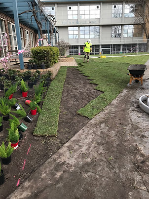 Commercial Landscaping and Construction