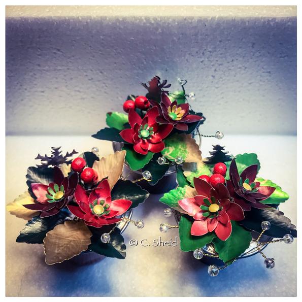 Poinsettias de Noël