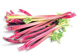 Herb Colours Image - Rhubarb