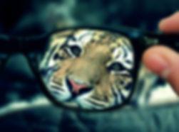 Όλοι φοράμε «γυαλιά»….jpg