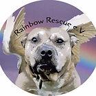 rainbow rescue.jpg