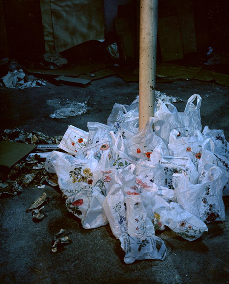 Le bouquet, 1997