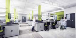 Lab Rendering