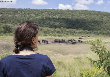 Elephant monitoring at LEO Africa - Vesta's three months