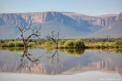 Waterberg Landscape