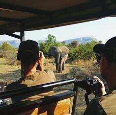 Anja and elephant.jpg