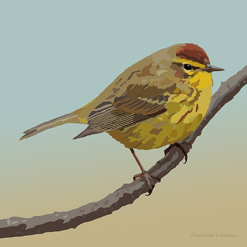 Palm Warbler - Bird Art - Graphic Art Print