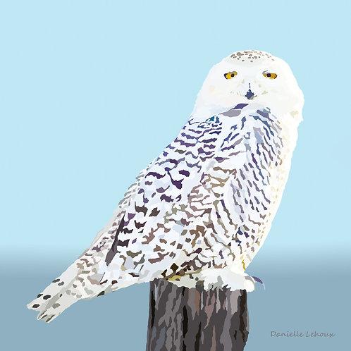 Snowy Owl - Bird Art - Graphic Art Print
