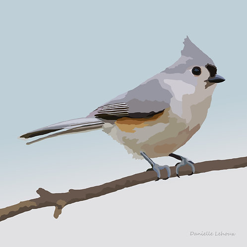 Tufted Titmouse - Bird Art - Graphic Art Print