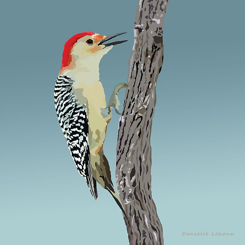 Red-bellied Woodpecker- Graphic Art Print