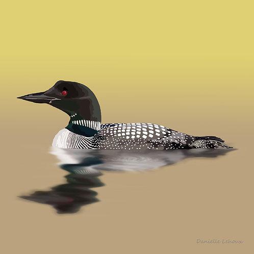 Common Loon - Bird Art - Graphic Art Print
