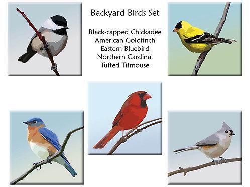 Acrylic Bird Magnets