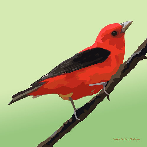 Scarlet Tanager - Bird Art - Graphic Art Print