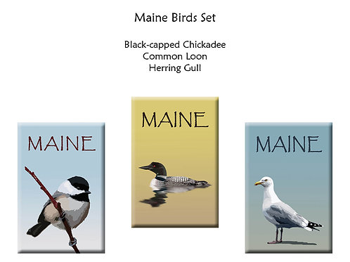 Maine Bird Magnets