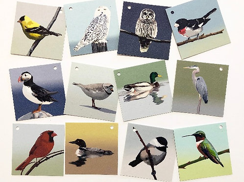 Assorted Bird Gift Tags