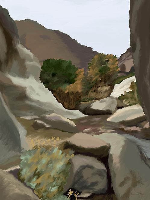 Anza-Borrego Desert State Park (Day 8)