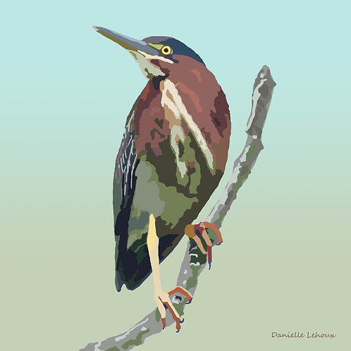 Green Heron - Bird Art - Graphic Art Print
