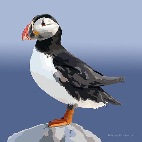 Atlantic Puffin - Bird Art - Graphic Art Print