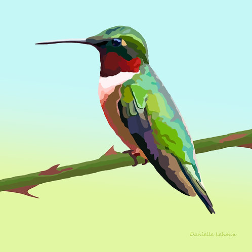Ruby-throated Hummingbird - Bird Art - Graphic Art Print