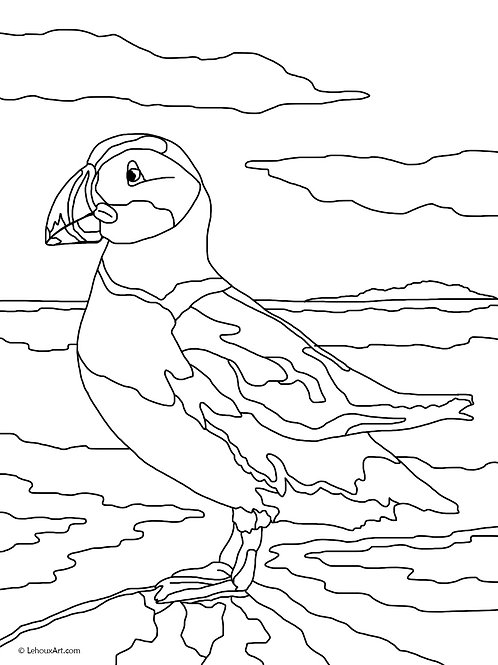Atlantic Puffin - Coloring Page