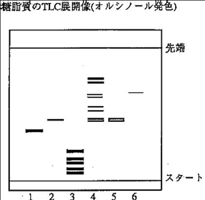 Pathogen Antiinfectant