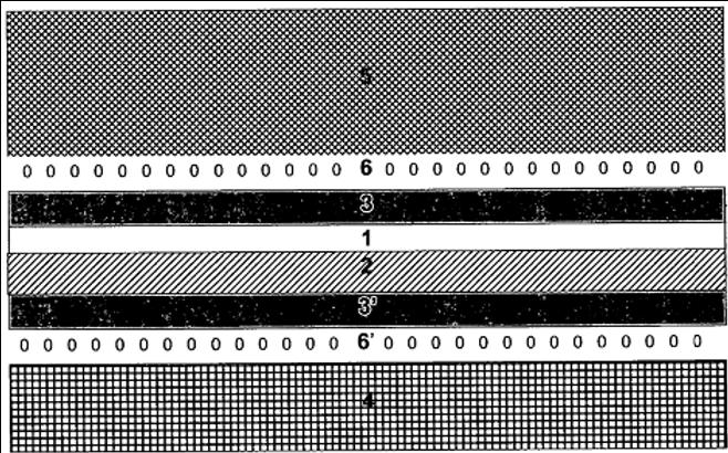 Laminates of chitosan films