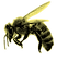 bee_halftone_edited.png